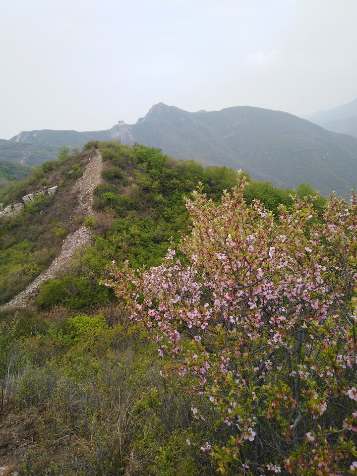 Stone Valley Great Wall, 2021/04/25 photo #2