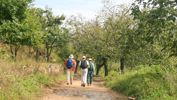 Hikers walking in the hills behind Flower Wood village