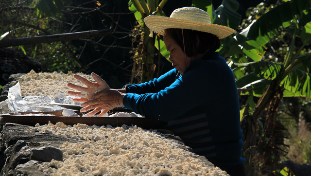 A Hakka lady working