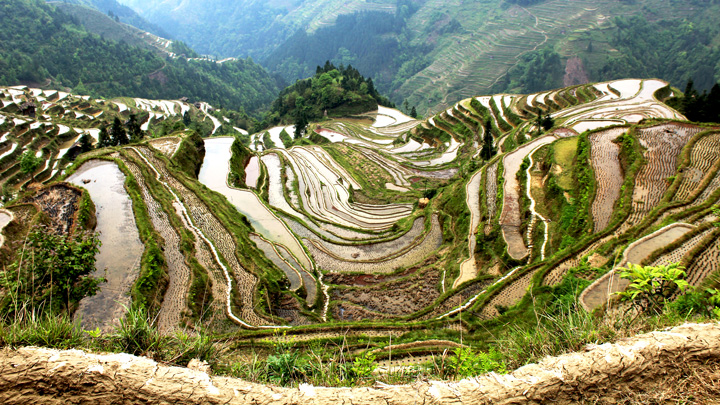 The Jiabang rice terraces