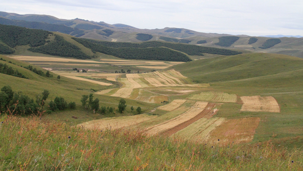 Autumn colours in the hills of the Bashang Grasslands, Hebei Province