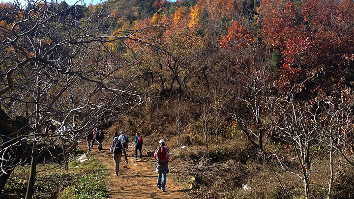 Autumn colours in the hills of Pinggu District