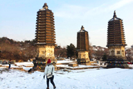 The Silver Pagodas, after a midwinter fall of snow