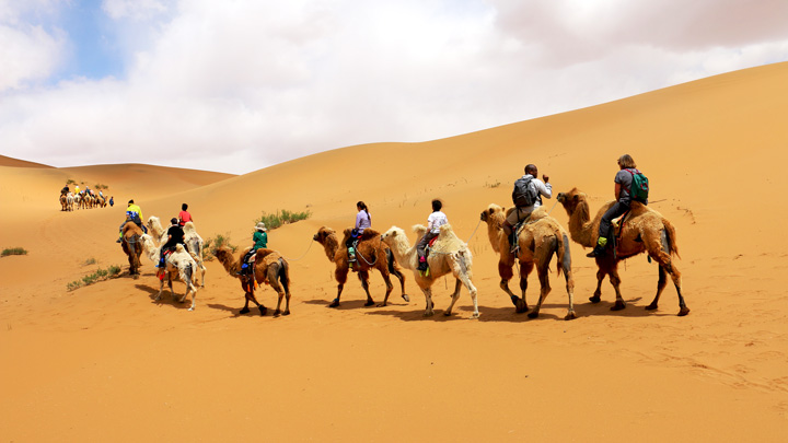 Riding camels through the Tengger Desert