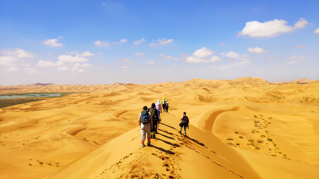 Tengger Desert, Inner Mongolia | Dunes as far as the eye can see, in the Tengger Desert