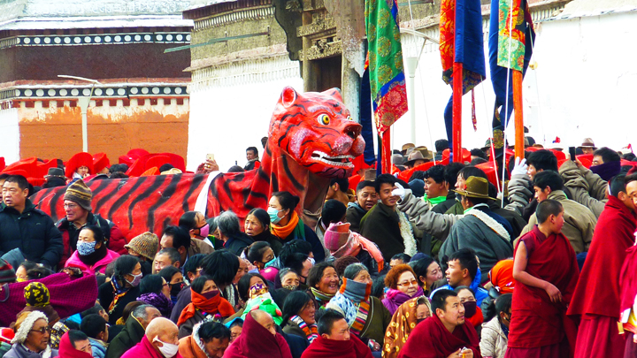 A tiger is carried through a crowd in Xiahe